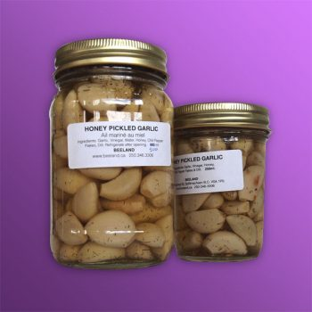 Honey-Pickled-Garlic