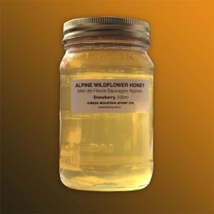 Snowberry Wildflower Honey